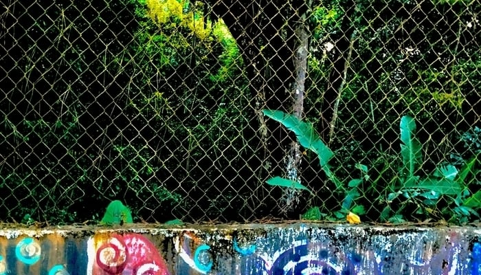 El Dorado, Panama City: The Metropolitan National Park beyond the fence