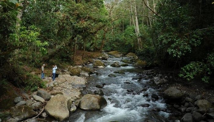 San Gerardo de Dota, Costa Rica: Trogon Lodge hiking trail