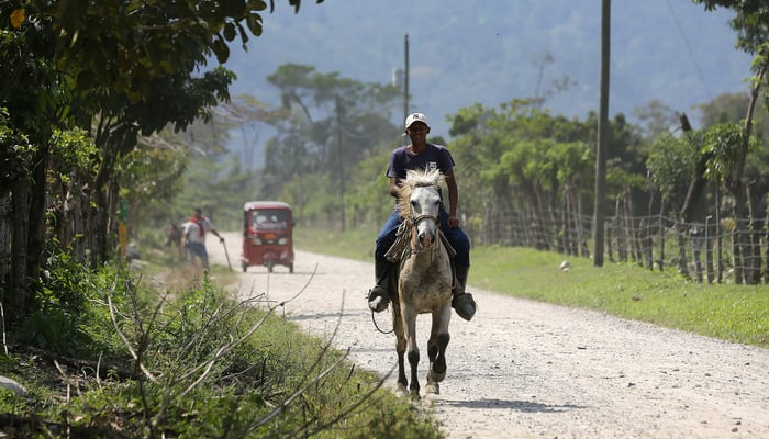 Roads in Central America: A man and his horse on the road near Cuyamel, Honduras