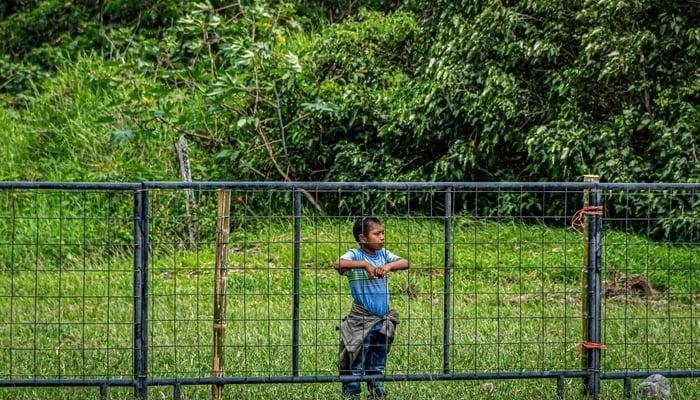 Lockdown Panama Belize / Photo by fran hogan on Unsplash